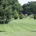Edgewood park field
